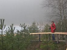 Kładka przy jeziorze /fot. Weronika Rudnik